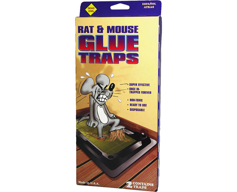 Rat Sized Glue Trap - 2 Pack