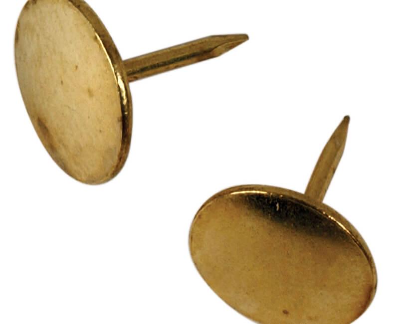Brass Thumb Tack - 40 PCS