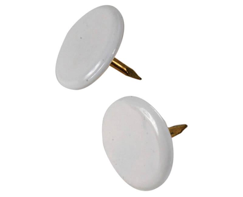 White Thumb Tack - 40 PCS