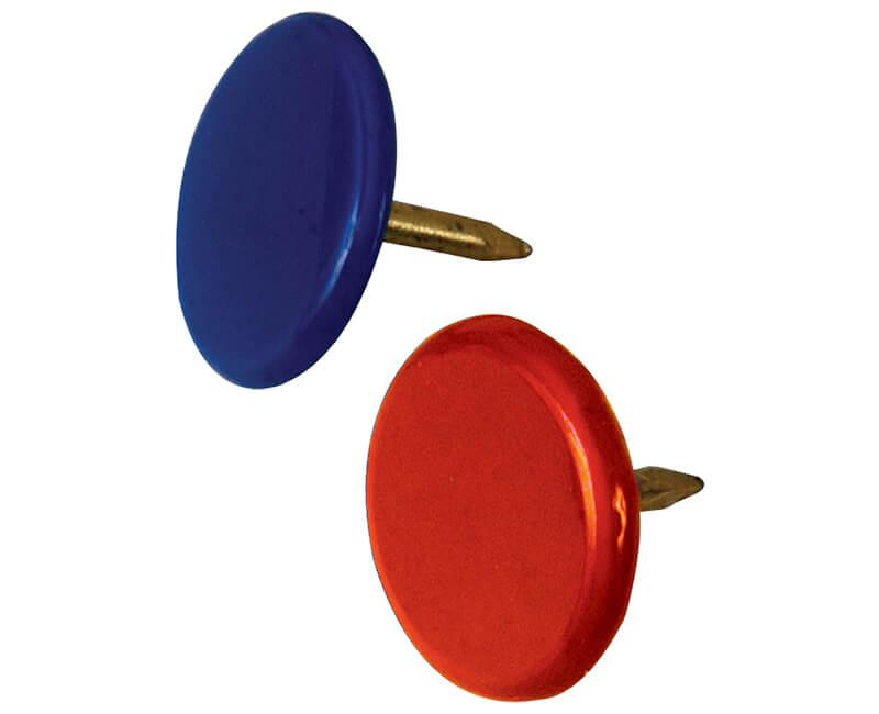 Assorted Thumb Tack - 40 PCS