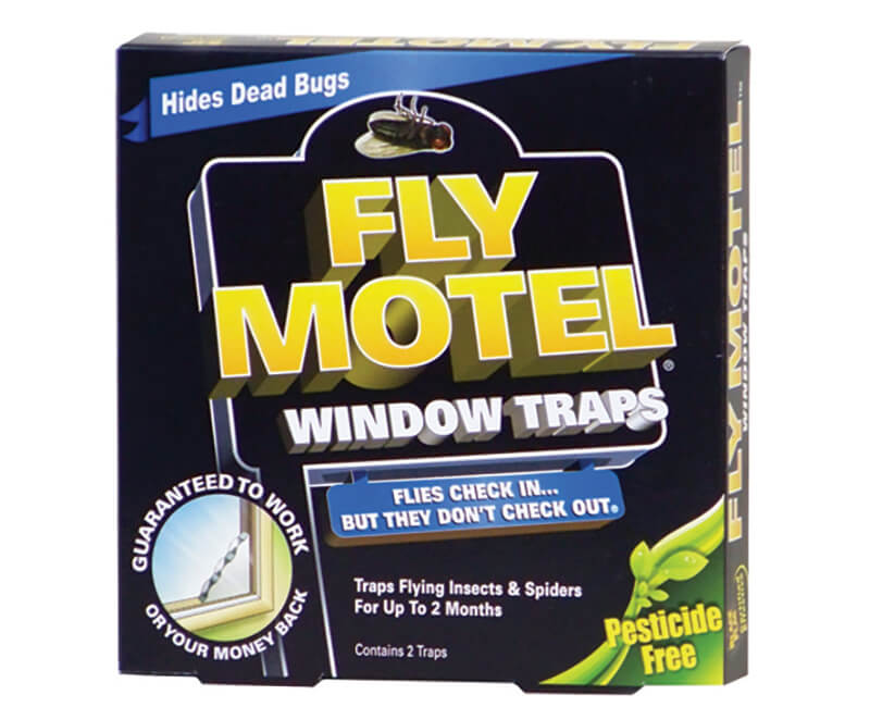 Black Flag Fly Motel Window Traps - 4 Pack