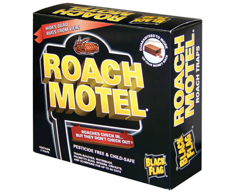 Black Flag Roach Motel - 2 Pack