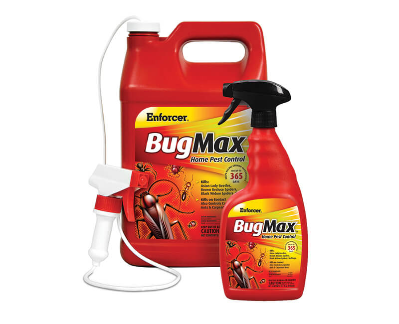 1 GAL. Bugmax Home Pest Control